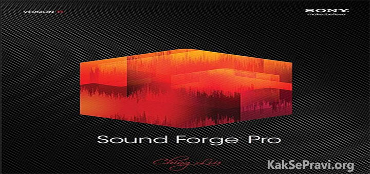 sony sound forge pro 11 0. Black Bedroom Furniture Sets. Home Design Ideas