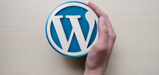 wordpress, fakti