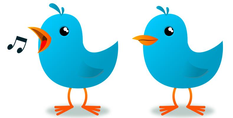 twitter,tweet